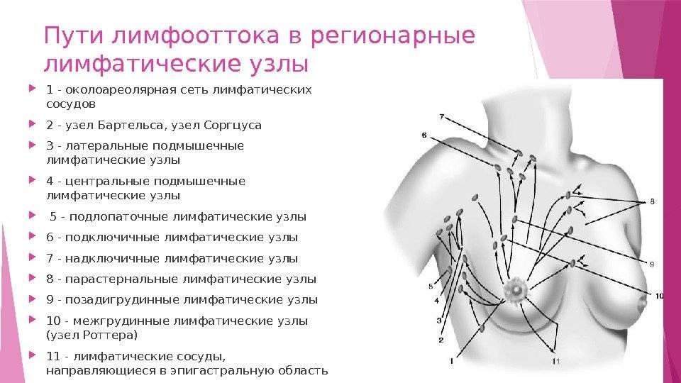 Аксиллярные лимфоузлы в молочной железе норма