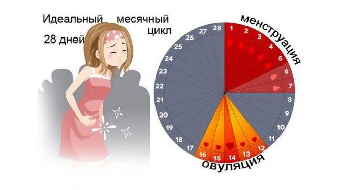 Когда назначают норколут для вызова месячных и нормализации цикла?