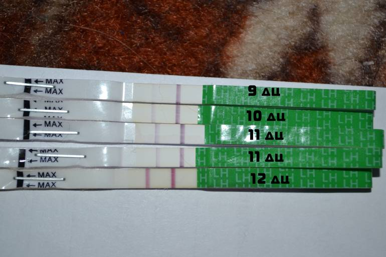 Задержка после отмены противозачаточных контрацептивов