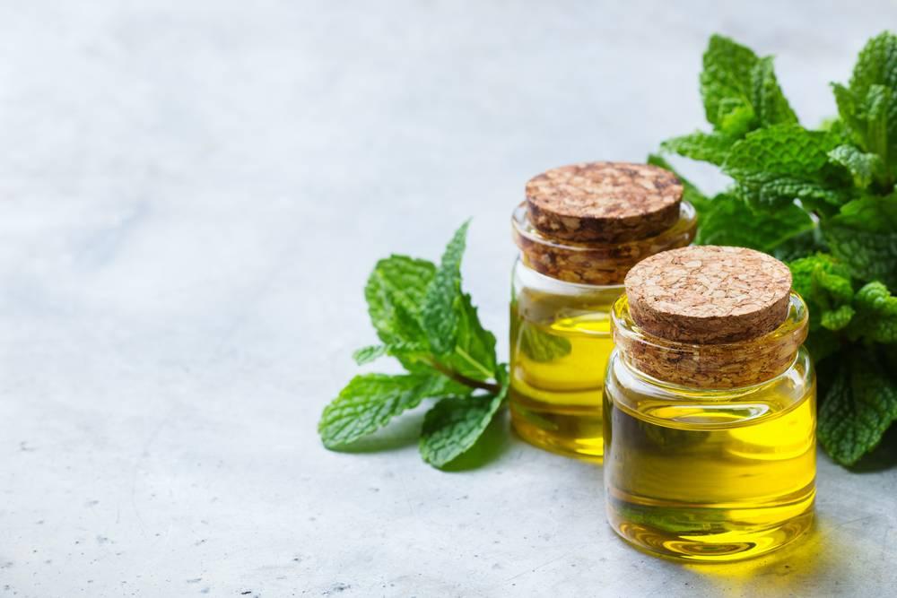 Польза и применение масла мяты для волос: для локонов разного типа в домашних условиях