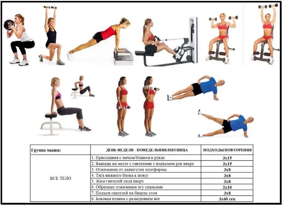 Как накачать грудные мышцы в тренажерном зале