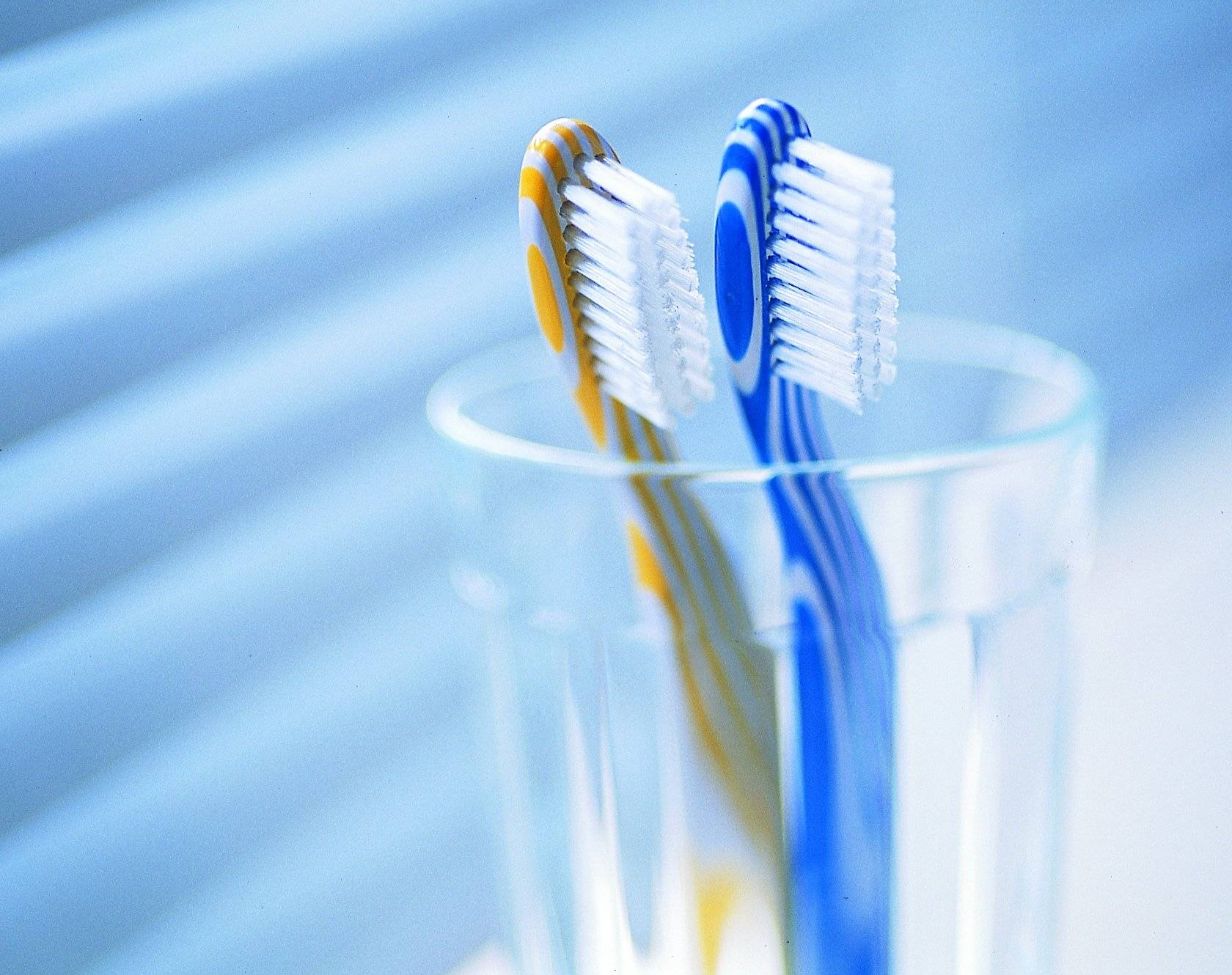 Как часто нужно менять мочалку для тела и зубную щётку
