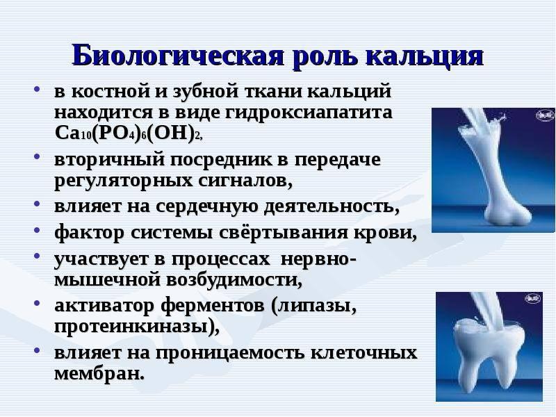 Важность кальция для зубов и способы его восполнения