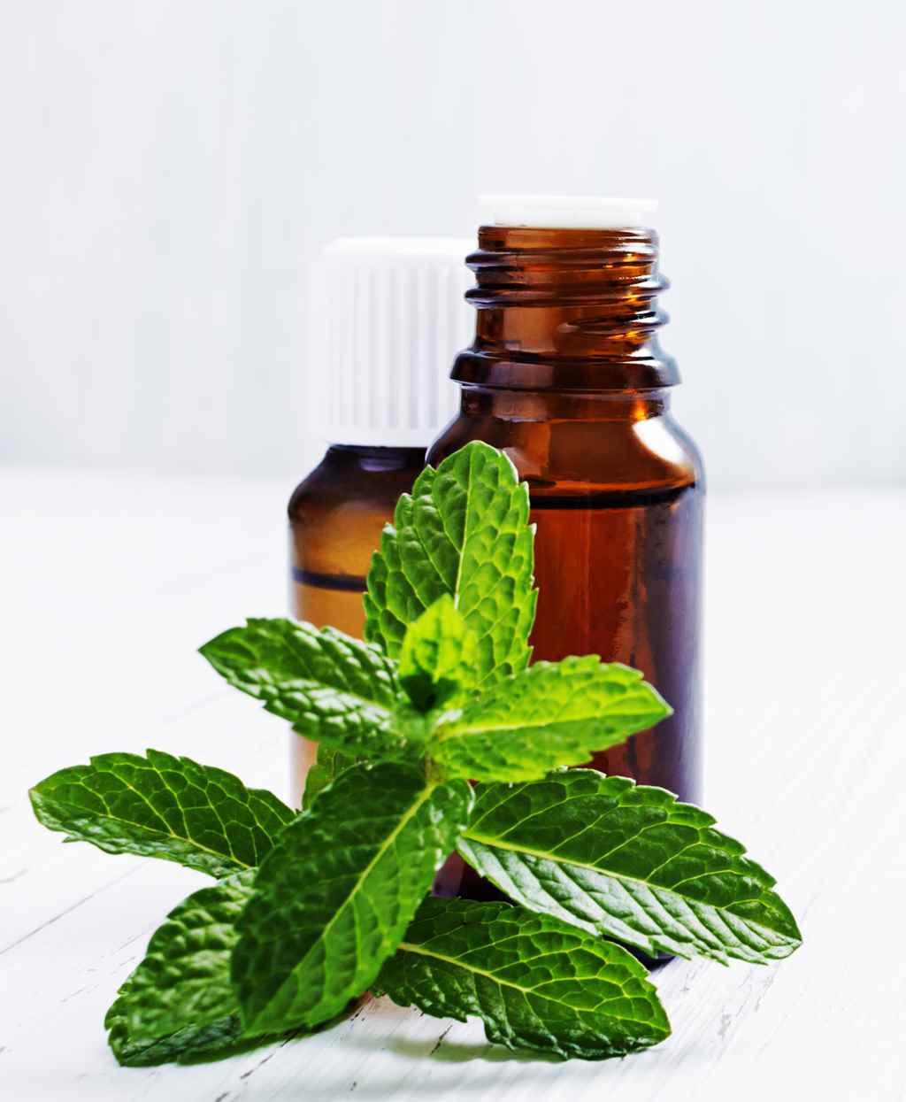 Особенности применения мятного масла для волос