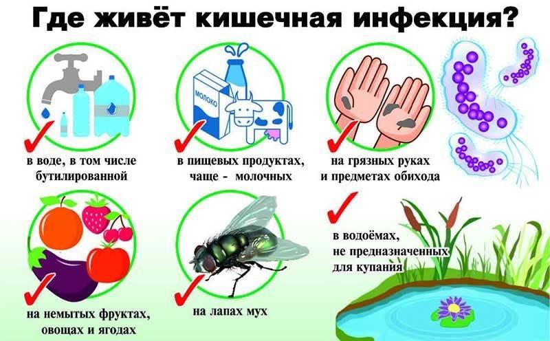 где живет инфекция