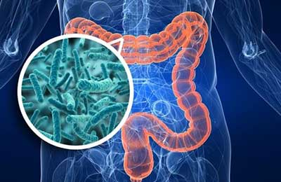 кишечные инфекции