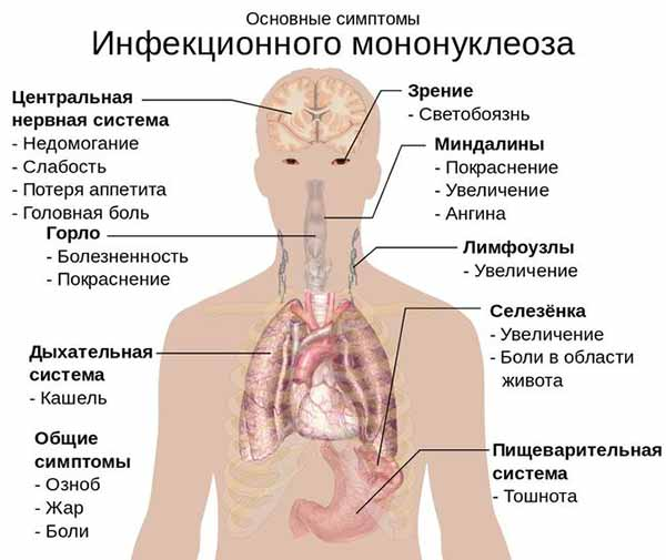 Субфебрильная температура при герпесе 4