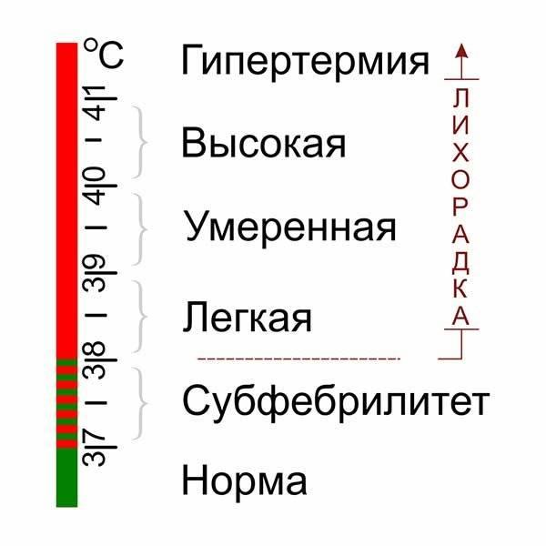 шкала температуры